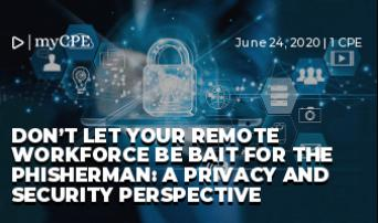 Don't Let your Remote Workforce be bait for the Phisherman: A Privacy and Security Perspective