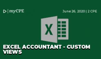 Excel Accountant - Custom Views