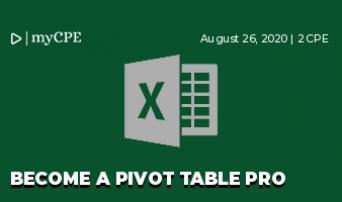 Become a Pivot Table Pro