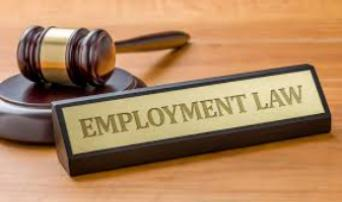 EMPLOYMENT LAW ISSUES MUST KNOW FOR ACCOUNTANTS