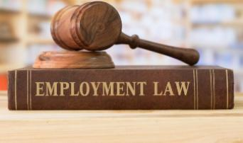 Employment Law in a Nutshell – Guidance for your Business