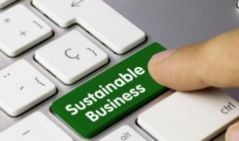 BUSINESS SUSTAINABILITY FACTORS OF PERFORMANCE, RISK AND DISCLOSURE