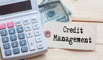 Cash and Credit Management: The Lifeblood of the Business