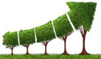 TGIF: Transform Grow Innovate in Finance
