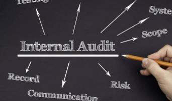Internal Audit Standards