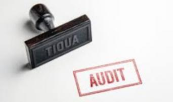 Auditing for Corruption