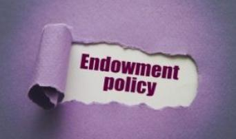 How Non-profit Endowment Funds Work: Donor Interest, Organizational Policies and Trends