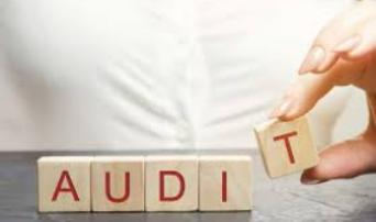 Auditing Revenue Recognition
