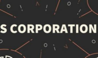 S Corps: Crucial Insights: Determining Reasonable Compensation, Basis Increases From Shareholder Debt, And Fixing The Loss Of S Corp Status.