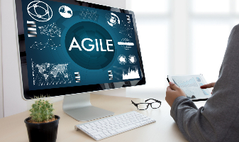 Agile Mindset: Applying basic agile principles to any project