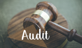 Update on the AICPA's Enhancing Audit Quality Initiative