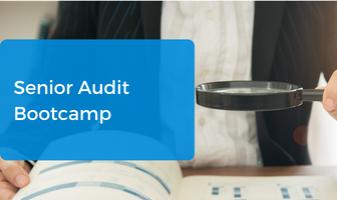 Senior Audit Bootcamp