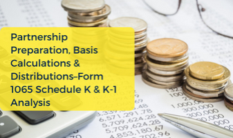 Detailed Tax Workshop on Partnership IRS Form 1065